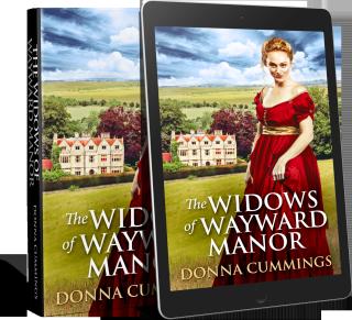 The-Widows-Of-Wayward-Manor-Promo-Hardback-Ereader